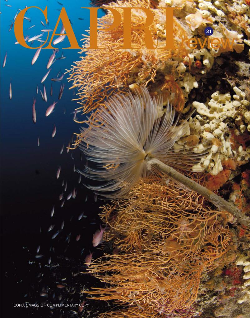 0 COVER Capri 31_Capri
