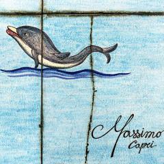 massimo-goderecci-delfino